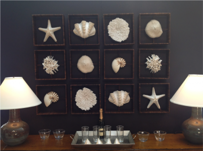 Shell and Coral Shadow Boxes