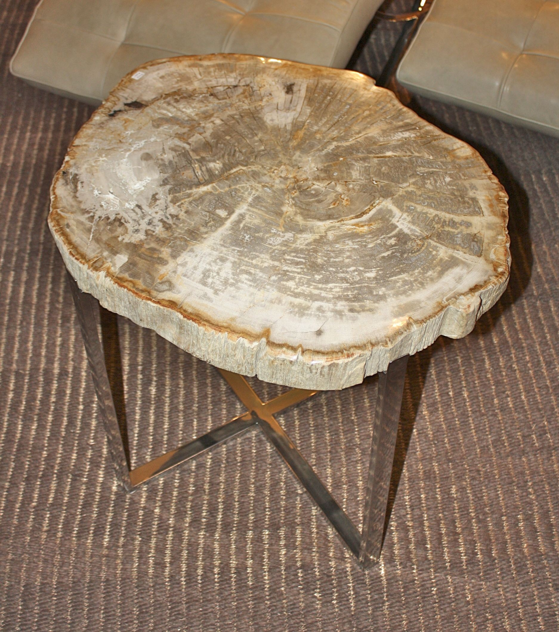 Lovely Petrified Wood Slice Side Table U003e