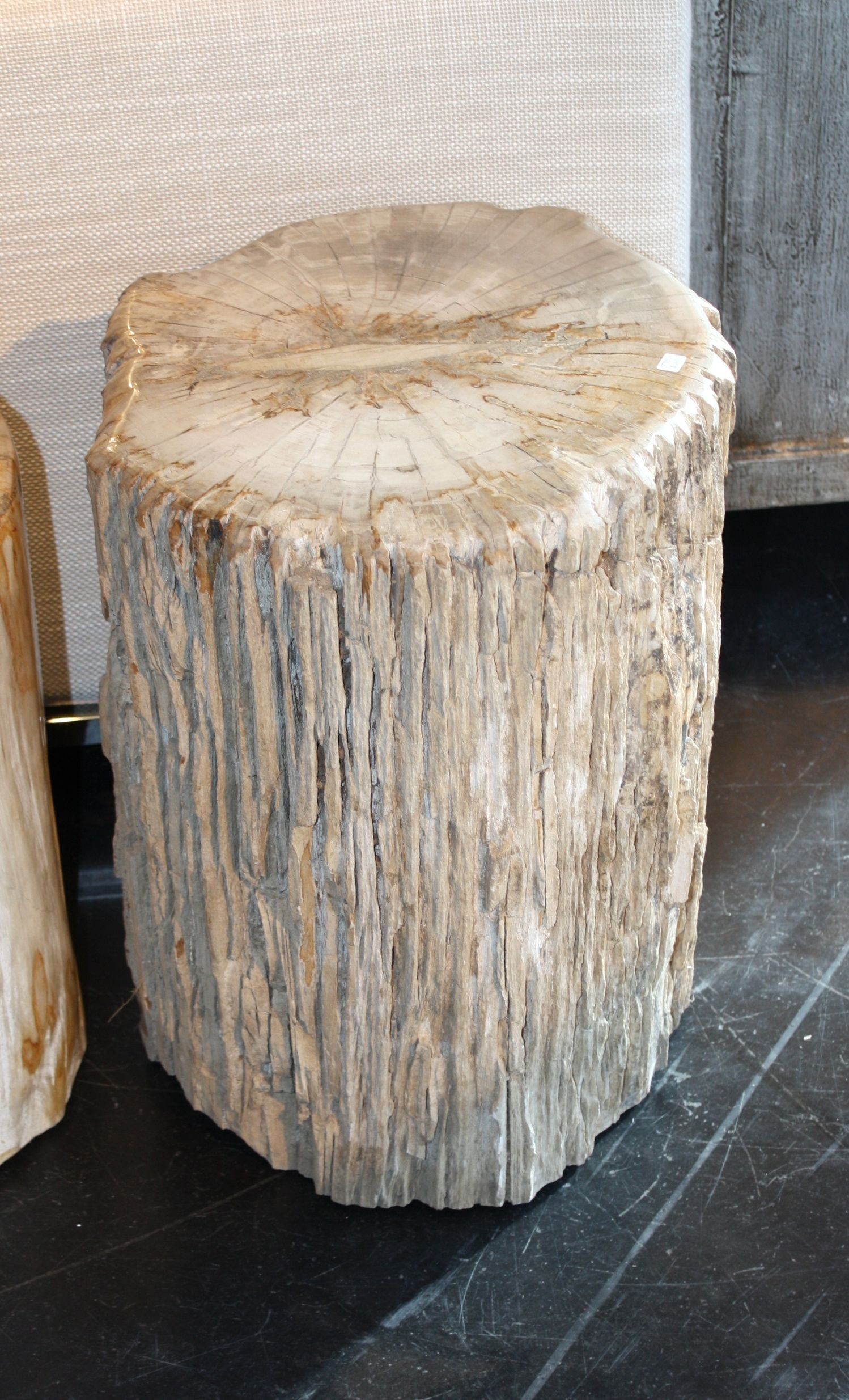 Pleasing Blond Petrified Wood Stool With Natural Bark Finish Gmtry Best Dining Table And Chair Ideas Images Gmtryco