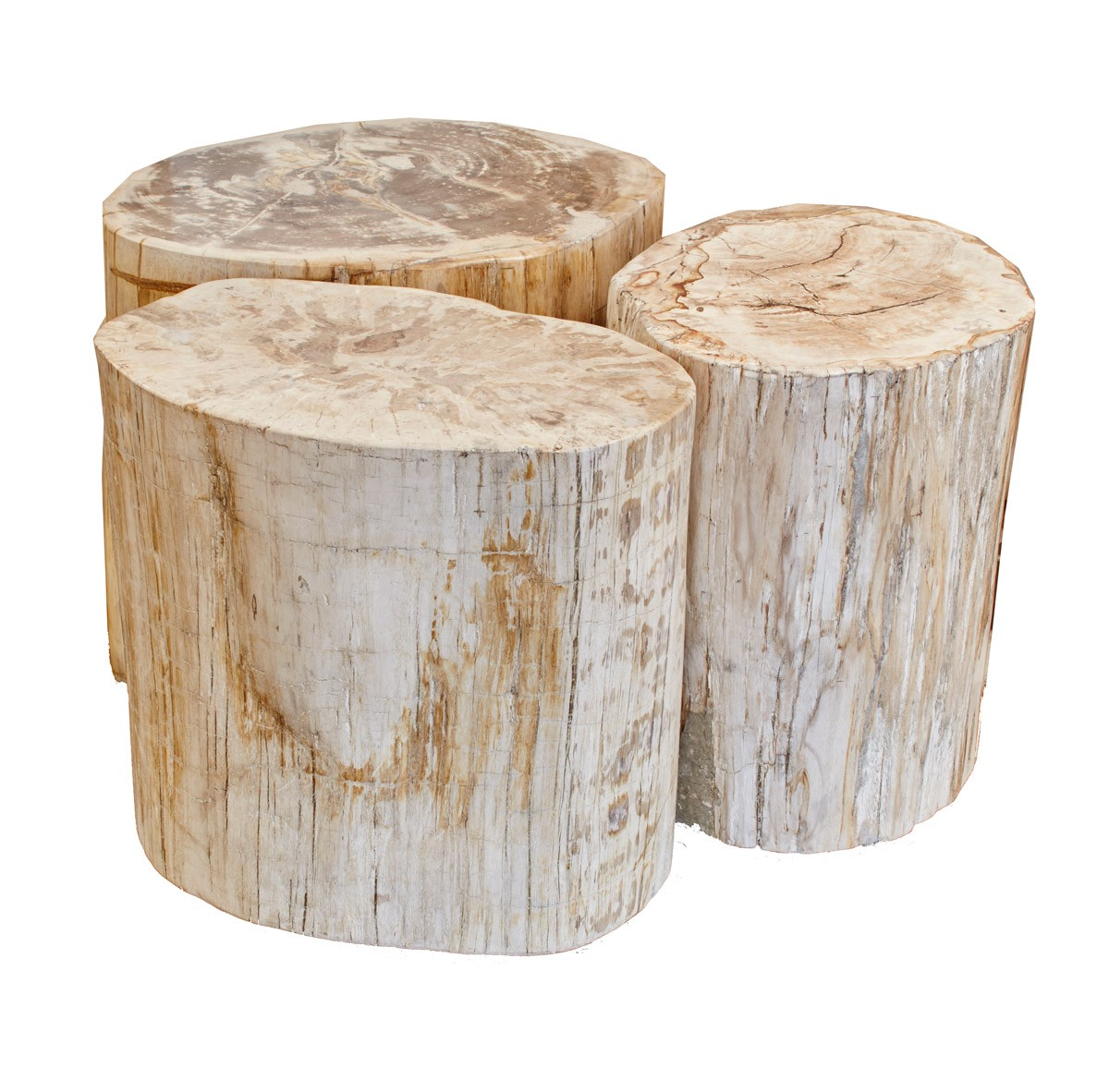 Prime Blond Petrified Wood Stool Full Polish Petrified Stool Gmtry Best Dining Table And Chair Ideas Images Gmtryco