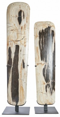 Surf Petrified Wood on stand