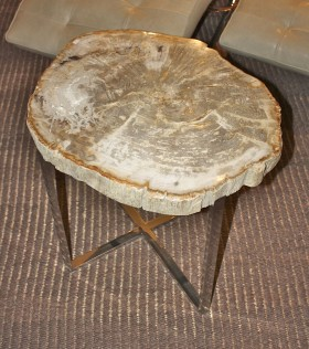 Petrified Wood Slice Side Table - Large