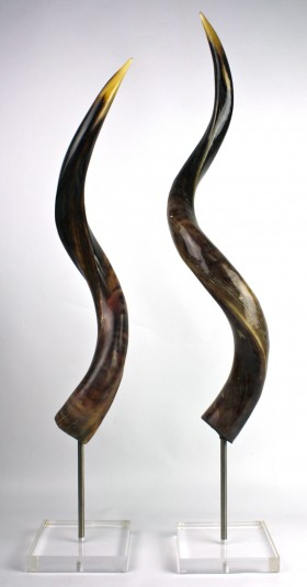 Polished Kudo Horn on Stand