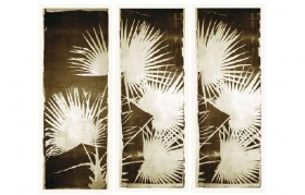 Triptych Three Panel Palm Fan