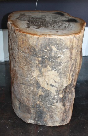 Petrified Wood Stool - Natural Bark