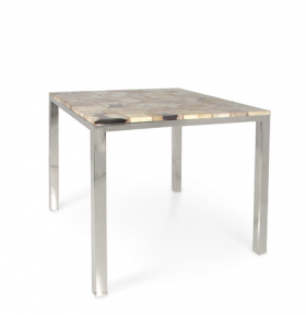 Petrified Wood Side Table - Square