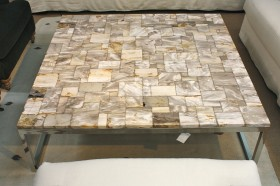 Petrified Wood Coffee Table - Square